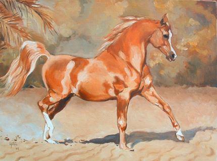 Showing the Flag - trotting chestnut stallion