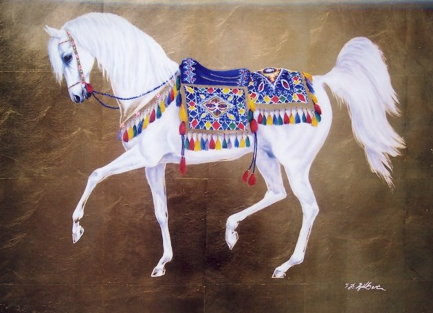 White Arabian with blue saddle